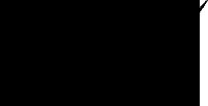 etixx sponsor mrt triathlon gent logo